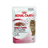Kennels #39; Favourite Royal Canin Instictive Jelly 85gr