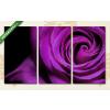 Képáruház.hu Lila rózsa(125x70 cm, L01 Többrészes Vászonkép)