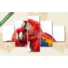 Képáruház.hu Premium Kollekció: Ara papagáj pár(135x70 cm, S01 Többrészes Vászonkép)