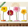 Képáruház.hu Premium Kollekció: flower nature garden botany daisy bloom pot(125x70 cm, L01 Többrészes Vászonkép)