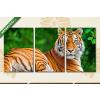 Képáruház.hu Sziklán heverésző tigris(125x60 cm, L02 Többrészes Vászonkép)