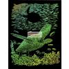 Képkarcoló készlet karctűvel - 20x25 cm - Szivárványos - Tengeri teknős