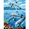 Kifestő készlet akrilfestékkel, ecsettel, gyerekeknek 8 éves kortól - 20x25 cm - Delfinek