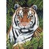 Kifestő készlet akrilfestékkel, ecsettel, gyerekeknek 8 éves kortól - 20x25 cm - Tigris a sűrűben