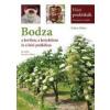 Kohut Ildikó Bodza a kertben, a konyhában és a házi patikában