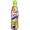 Kubu Play rostos ital 0,4 l répa-vérnarancs-lime-alma