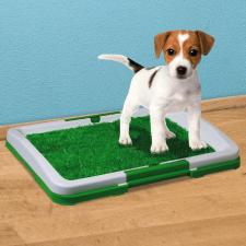 Kutya toalett kutyafelszerelés