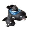 LENA : Kardszárnyú delfinek