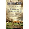 Luzie Bosch BOSCH, LUZIE - TORI ÉS AZ ELVESZETT KANCA - NAPFÉNY TANYA