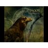 Magor Testamentum (CD)