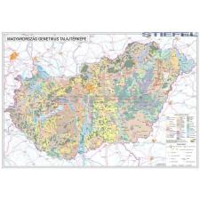 Magyarország talajtani térképe fémléces térkép