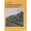 Mezőgazdasági A szőlő metszése, fitotechnikai műveletei