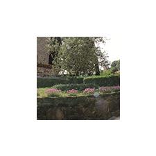 Nortene Műanyag rács, 5x5 mm szemméret, Square (0.5 x 5 méter) antracit kerti dekoráció