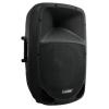 Omnitronic VFM-215 2-way speaker
