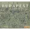 Panoráma Budapest egykor és ma