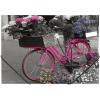 "PANTA PLAST Gumis mappa, 15 mm, PP, A4,  ""Bike"""