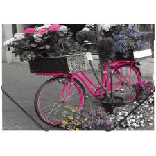 """PANTA PLAST Gumis mappa, 15 mm, PP, A4,  """"Bike"""" mappa"""