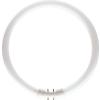Philips Körfénycső TL5 Circular 22W/827 2GX13 2700k Philips