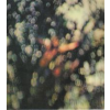 Pink Floyd Obscured By Clouds (CD)