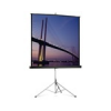 PROJECTA Picture King Portable and Tripod Screen, 152x152cm