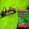 Protect Protect combi hangyairtó csalétek 3 db