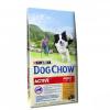 Purina Dog Chow Active 14 Kg