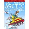 Puzzle Adventures: Agent Arthur's Arctic Adv.
