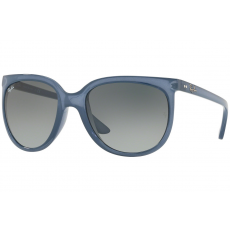 Ray-Ban Cats 1000 RB4126 630371