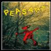Richard Dawson Peasant (CD)