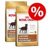Royal Canin Breed gazdaságos csomag 2 x nagy tasak - Jack Russell Terrier Adult (2 x 7,5 kg)