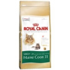 Royal Canin FBN Maine Coon 31 4 kg