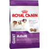 Royal Canin Giant Adult kutyatáp 2×15kg Akció!