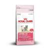 Royal Canin Kitten 36 (4kg)