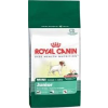Royal Canin Mini Junior 4 kg