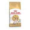 Royal Canin Siamese ADULT 2 kg