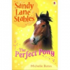 Sandy Lane Stables: The Perfect Pony