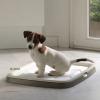 Savic Puppy Trainer kezdő készlet - méret XL + 7 betét