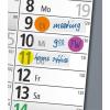 SIGEL Jelölőcímke, műanyag, 5x40 lap, 50x12 mm, SIGEL, vegyes szín (SIHN301)