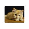 Speedlink Speedlink SL-6242-CAT Silk kiscicás egérpad