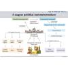 Stiefel A magyar politikai intézményrendszer
