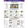 Stiefel Basic English IV. DUO + 10 db ajándék tanulói munkalap
