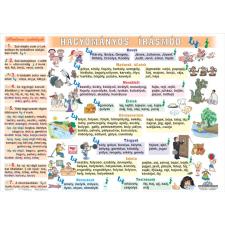 Stiefel Eurocart Kft. A hagyományos írásmód I. LY-J DUO   ajándék 10 db tanulói munkalap tankönyv