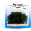 Tetra műnövény (L) Green Cabomba (3)