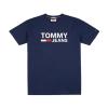 Tommy Hilfiger Tommy Jeans Classic Logo T-Shirt DM0DM04837 002