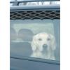Trixie Autós ablakrács, nagy 13102