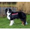 Trixie Hátizsák kutyának L trx30103