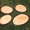 TTS Kültéri fa írótábla (4db)