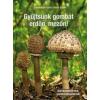 Vasas Gizella, Locsmándi Csaba Gyűjtsünk gombát erdőn, mezőn!