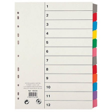 VIQUEL Regiszter, laminált karton, A4, 12 részes, VIQUEL lefűző