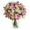 Virág a világba Csodálatos vagy